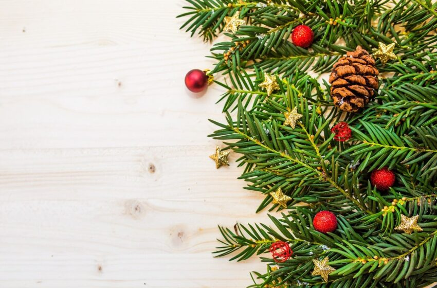 How to Decorate a Christmas Tree Step by Step Professionally?