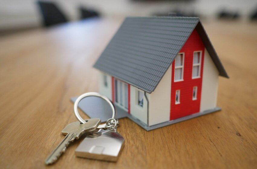 All You Need to Know About Renting in Denmark