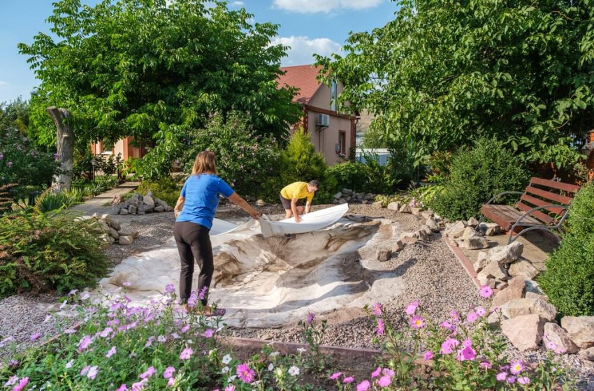 How to Set Up a Fish Pond